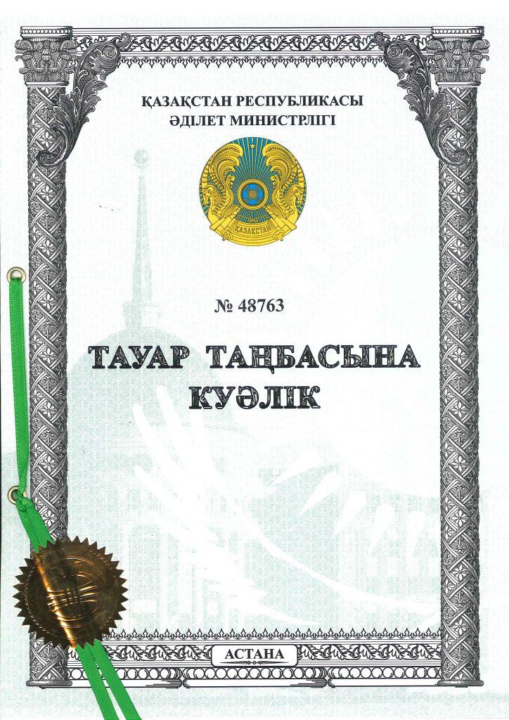 這張圖片的 alt 屬性值為空,它的檔案名稱為 42-ALYA新11類哈薩克正面-48763-724x1024.jpg